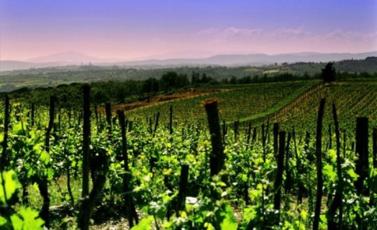 Nel 2014 Cantine riunite Civ guida il vino italiano