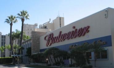 Birra addio, i millennials preferiscono il calice