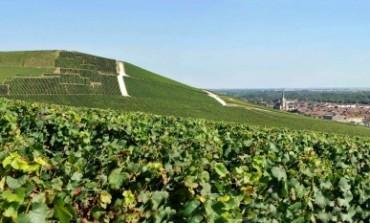 Champagne e Borgogna patrimonio Unesco