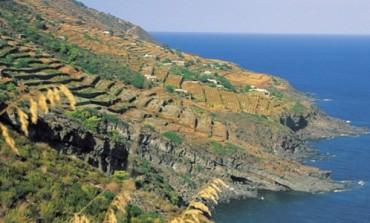 Sicilia, boom della produzione Doc