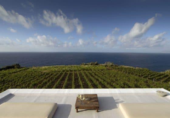 Nuovi terreni e resort di lusso per Tasca d'Almerita