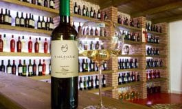 Vini tracciati con Wine Blockchain