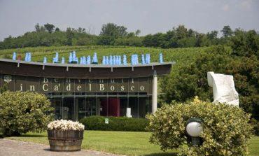 Ca' del Bosco compra 23 ettari in Franciacorta e punta al 50% di export