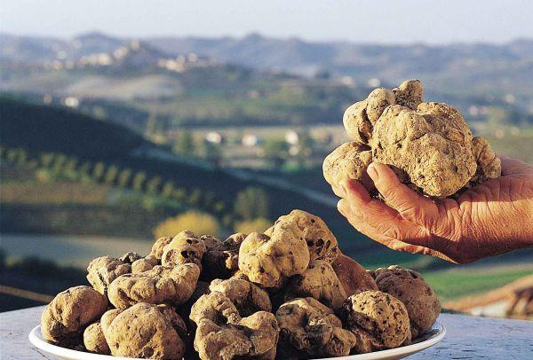 Alba è città creativa Unesco per il food. E il turismo decolla