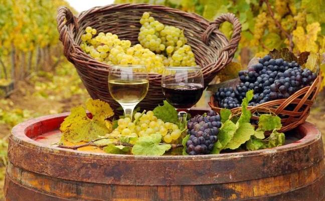 Decolla il turismo del wine&food (+30%)
