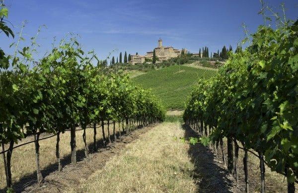 Banfi compie 40 anni e rafforza l'Italia