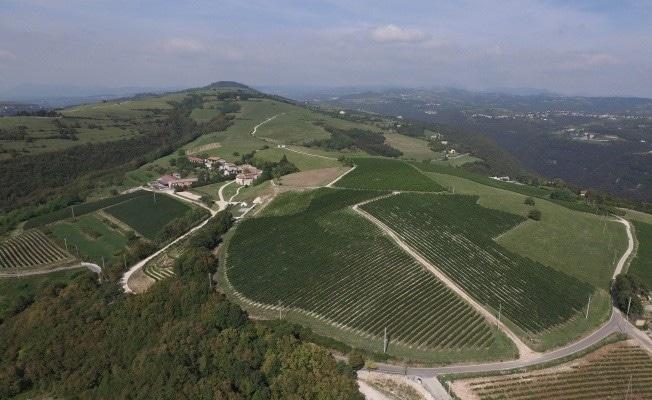 La Collina dei Ciliegi inaugura l'hospitality tra le vigne*