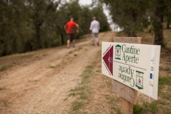 Oltre un milione i wine lovers a Cantine Aperte