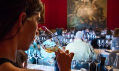 """La cultura del """"buon bere"""" tra i focus del Salone del Gusto"""
