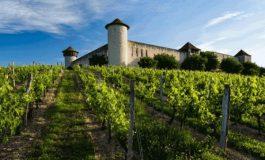 Bordeaux, sequestrati dieci chateaux al gruppo cinese Haichang