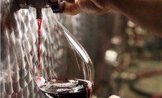 A Milano ora si fa anche il vino. Nasce Cantina Urbana