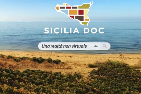 Doc Sicilia, 50 milioni di bottiglie in sette mesi