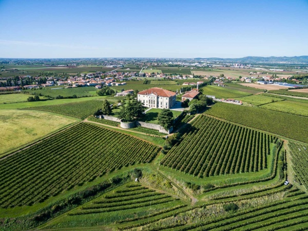 Vitevis incorpora Castelnuovo e punta oltre 50 milioni