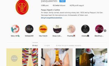Il vino ha scelto Instagram: +71% di follower
