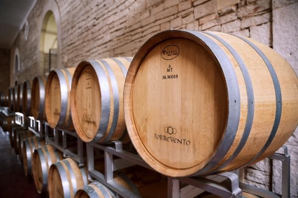 Con Prosit nasce un polo del vino premium