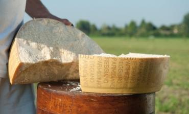Caseifici Aperti, al via la kermesse del Parmigiano Reggiano