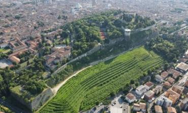 A Monte Rossa il più grande vigneto urbano d'Europa