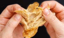 La carne veg di Heura Food raccoglie 4 mln €